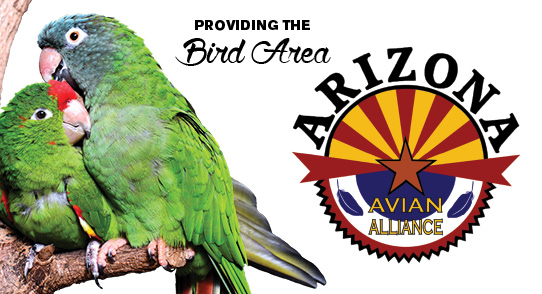 Arizona_avianAlliance
