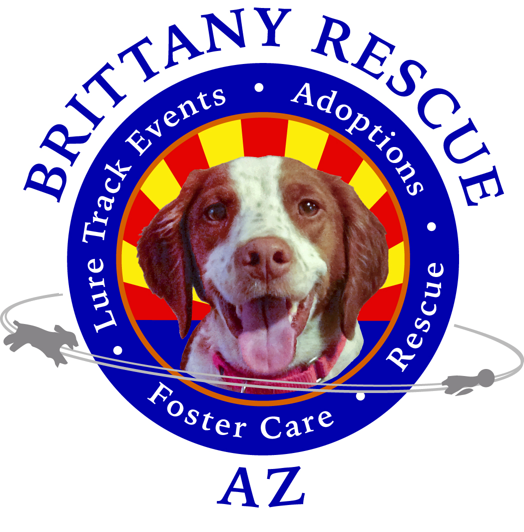 Official Logo Indy 2- Arizona Brittany Rescue