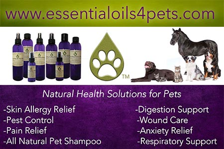Endless Mt. Oil Blends for Pets